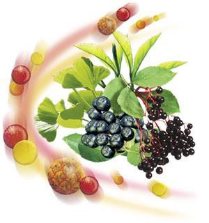 Липоевая кислота какой это витамин